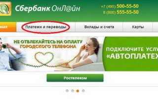 Как заплатить за садик через Сбербанк онлайн